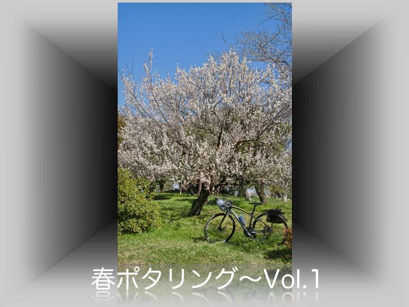 春ポタリング〜利根川サイクリング・ロード沿い: Z/PPER